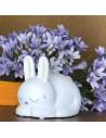 Lucina da notte in porcellana bianca opaca a forma di coniglietto
