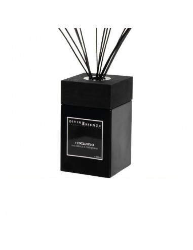 Stick diffusers 100 ml DivinEssenzE