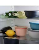 Contenitori ermetici da frigo-freezer-microonde-lavastoviglie Rosti Mepal